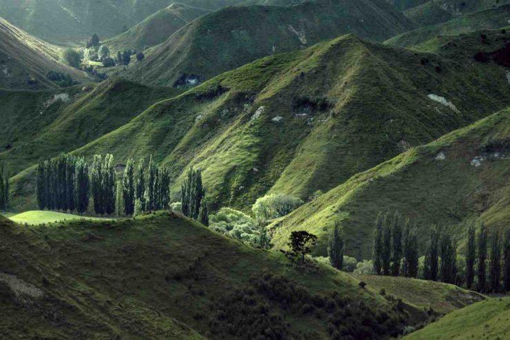 Izlet do vidikovca Planine Viktorija