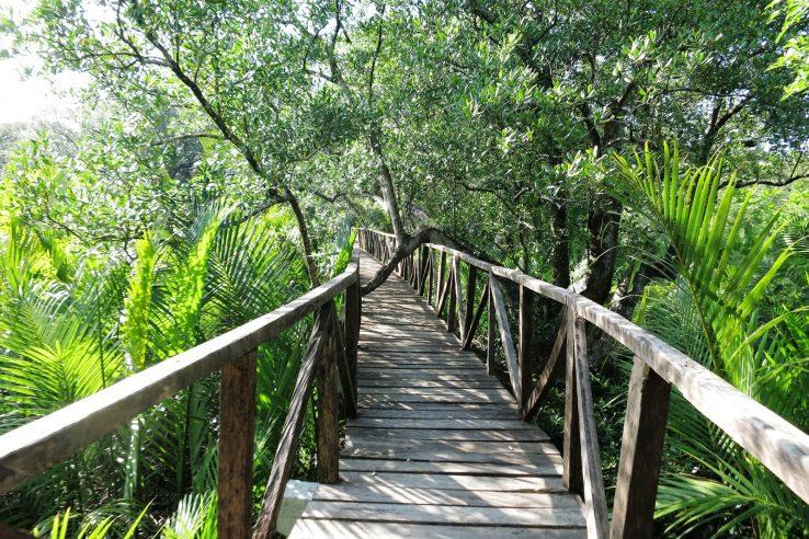 Bakavan eko park